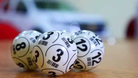 Лотерея «Беловежская пуща» — описание, цели, правила и условия получения выигрыша