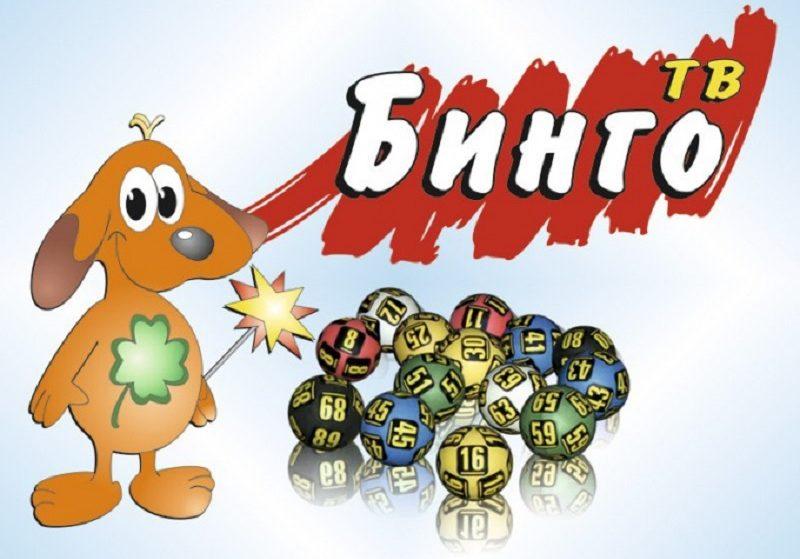 Лотерея «Теле бинго» в Казахстане — правила игры, как узнать результат и получить приз